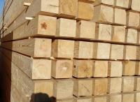 Best Quality Birch Lumber Wood Timber