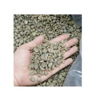 ARABICA GREEN COFFEE BEANS HIGH QUALITY