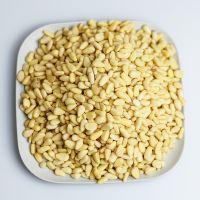 Top quality pine nut Pakistan/pine nut kernels
