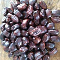 100% Organic Fresh Tamarind Seeds
