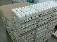 Fresh White Chicken Eggs