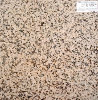 Sell Chrysanthemum Yellow(Granite Tile, Granite Slab)