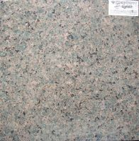 Sell Precious Gold(Granite Tile, Granite Slab, Granite Counter tops)