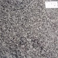 Sell Icy Black Flower(Granite Tile, Granite Slab, Granite Counter top)