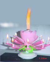 sparkler,fountain,roman candle,cake fireworks,spinning wheel,