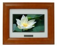 Sell 7inch digital photo frame KDF-711