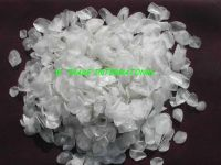 sell dry fish scale
