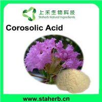Hot sales Corosolic acid/Banaba extract/lose weight