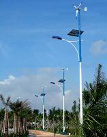 Sell Wind & Solar Hybrid Street Lighting 500w