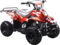ATV-3050C(EPA 110cc ATV)