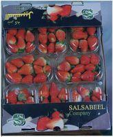 Sell Fresh Vegetables & Fruits