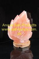 Leave Shape Himalayan Crystal Salt Lamps/Himalayan Pink Rock Salt Flower Lamps/ Himalayan Flower Leave Salt Ionziers