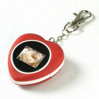 Sell 1.1 inch Digital Keychain Photo Frame(DPF102)