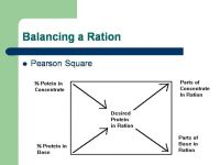 Feed Formulation Software Pearson square Automated for 6