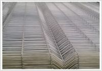 Sell stainless Welded Mesh