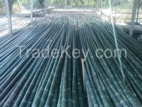 Sell Bamboo Cane