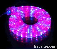 Sell LED rope light