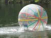 Sell inflatable walking ball