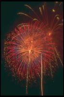 sell all kinds of  fireworks