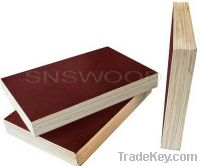 Sell 1220X2440mm Film Faced Plywood(Brown, Formwork)