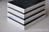 Sell Film Faced Plywood formwork