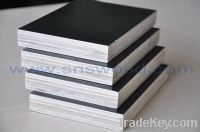 Sell Film Faced Plywood (Black)1220X2440mm