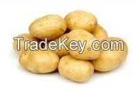 Looking for Potato Buyers