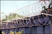 Sell razor barbed wire
