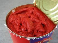 Sell tomato paste with high quality