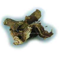 Sell Siberian Ginseng Root