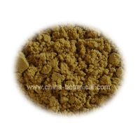 Sell Ginger Extract Powder