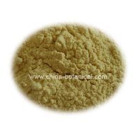 Sell Angelicae Sinenisis Extract Powder