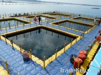 Sell fishing cage