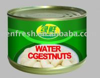 Canned Water Chestnut(slices/whole/dice 227g, 2950g FDA)