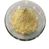 Freeze Dried Durian Powder