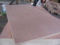 Sell okume plywood