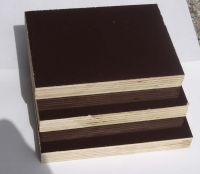 Sell construction  plywood