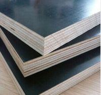 Black shuttering plywood, 1200x1800x17mm, 1200x2400x17mm