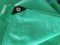 135-260g green color , virgin materials PE waterproof tarpaulin , Rain cover