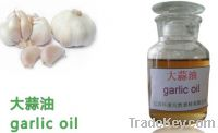 Sell Natural Garlic Oil, Food additive, Essential oil, Spices (Cas.8000-7
