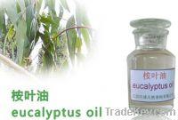 Sell Organic Eucalyptus Oil, Eucalyptus essential oil, CAS 8000-48-4