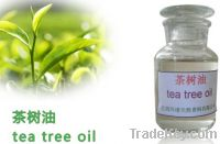 Sell Pure And Natural Tea Tree Oil, CAS No. 68647-73-4