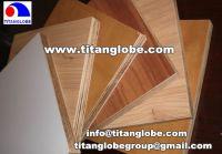 Sell Melamine Plywood