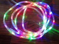 Sell battery LED rope light with multi  LED and clear tube , waterproof
