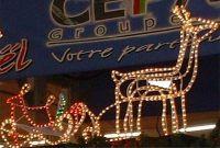 SELL Christmas lighting rope light