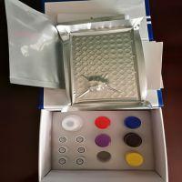 Interleukin 10 Elisa Kit