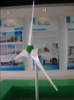 600W Wind Turbine-Carbon Fiber Blade