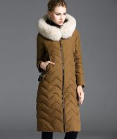 Women's Winter Outwear Light Coat Hooded Down Jacket