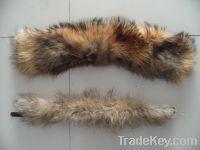 Sell Raccoon Fur Collar