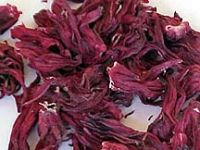 Sell Hibiscus